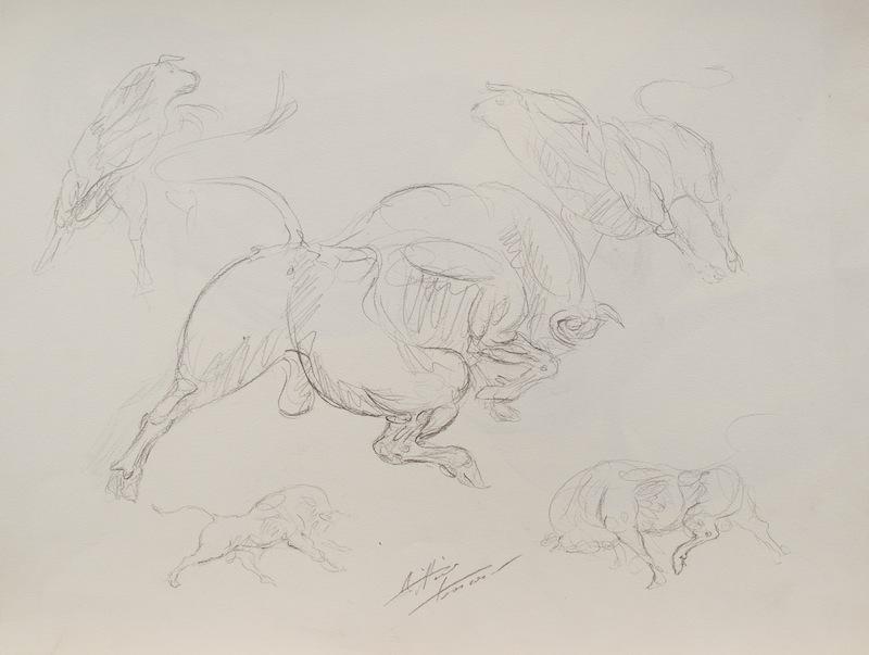 Animali-tori_disegni_by_Vittorio_Tessaro